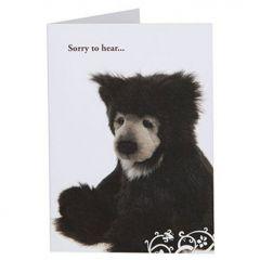 Charlie Bears card Slothy Joe