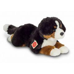 Hermann Teddy Berner Sennen hond 919407