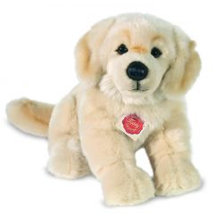 Hermann Teddy Golden Retriever hond 927464