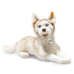 Steiff Siberian Dui Husky dog EAN 033070